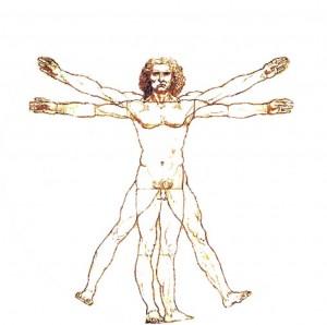 Leonardo der Grosse